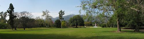 Arboretum Photomerge 02