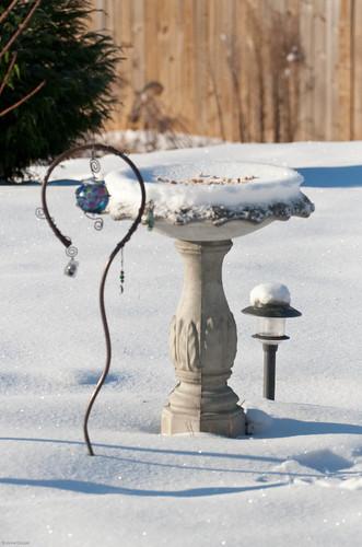 365/31: Snow!
