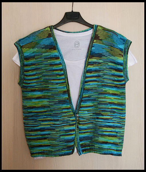 green brown blue vest