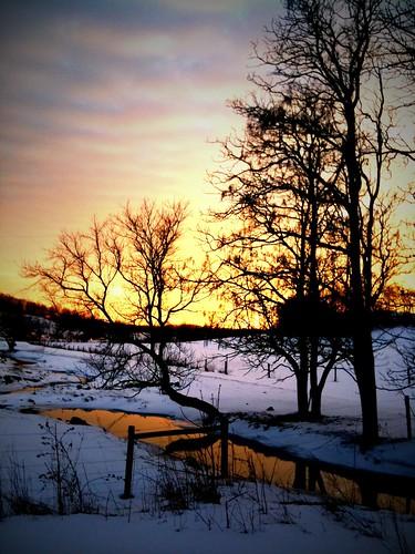 winter walk 5