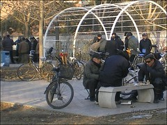 Beijing - winter gambling