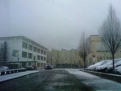 Schnee_Altdorf_03
