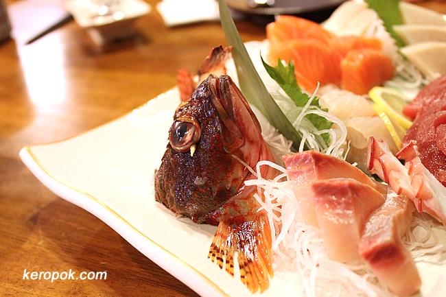 Kasago Rockfish