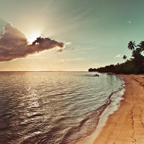 Cuba Gallery: Tropical island palm tree / sun / sunlight / light / clouds / sea / sunset / natural light / retro / beach / ocean / wave / water ripple / vintage / summer / photography