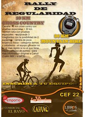 Afiche Rally 2010 cahuil chico tamaño reducido