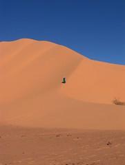 algérie 146