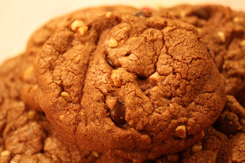 Cookie Closeup