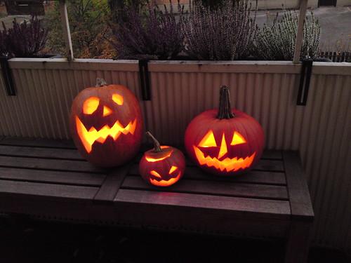 my halloween pumpkins
