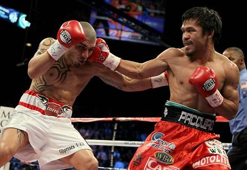 Manny Pacquaio vs Cotto Fight Pictures ( Photo by Al Bello/Getty Images)