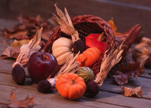 Cornucopia with pumpkins