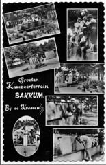 camping Bakkum kaart 14
