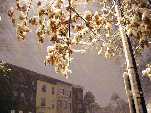 It's coming down by Dave Kleinschmidt