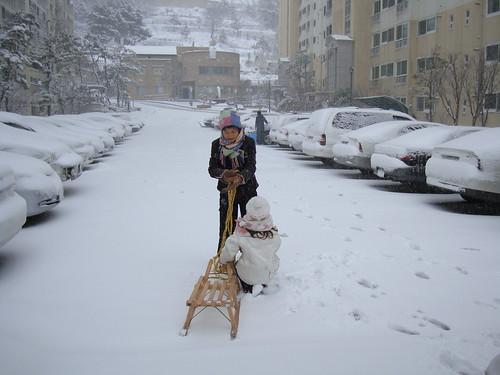 Schnee VII
