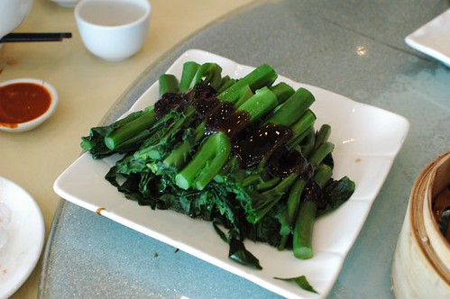 Steamed chinese broccoli with oyster sauce