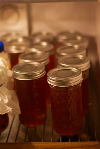 jelly jars full of Tea