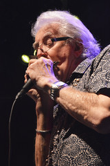 "John Mayall • <a style=""font-size:0.8em;"" href=""http://www.flickr.com/photos/10290099@N07/32679126740/"" target=""_blank"">View on Flickr</a>"