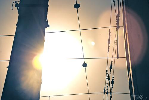 Against the Sun. - 19/365