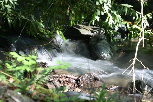 Cascade Falls, Marin