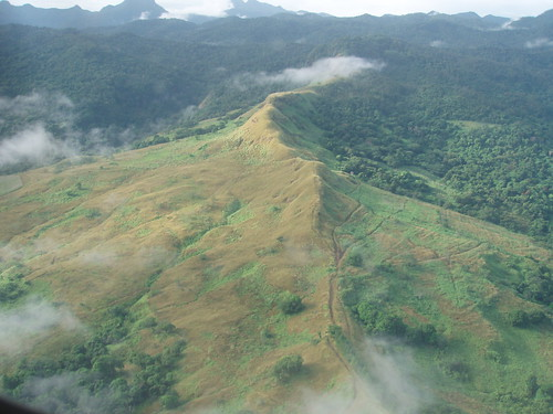 Mountain-top tracks, Vanualevu highlands, Fiji