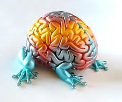 fMRI Jumping Brain by Emilio Garcia