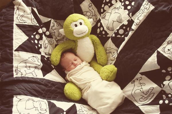 must haz sleeps