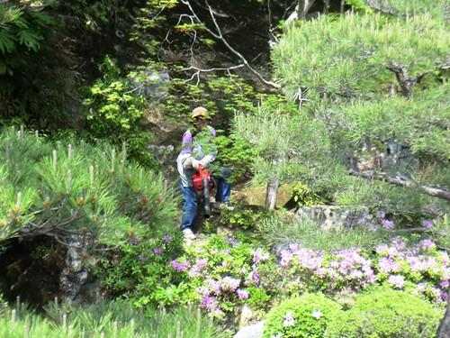 Spring Cleaning: North Garden