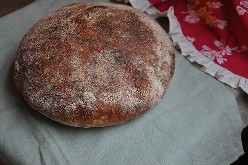 Homemade No-Knead Bread