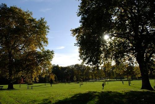 Millsfield Park
