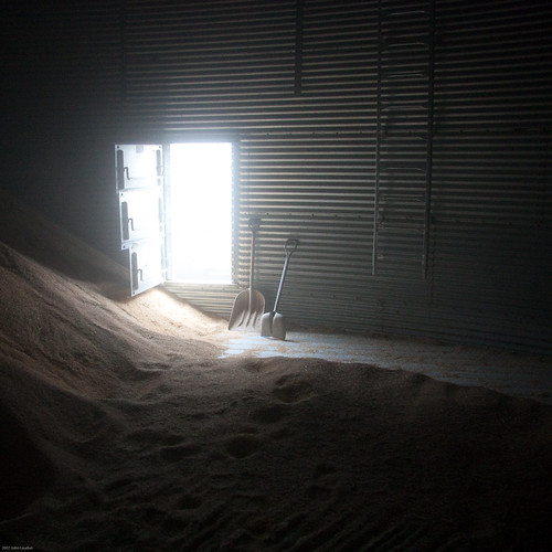 The View from inside a Grain Bin