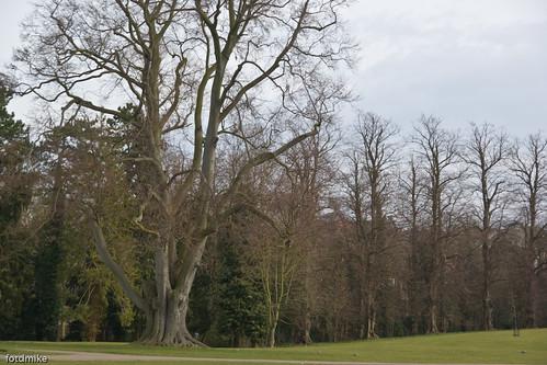 Hall Park, Rushden _G103566