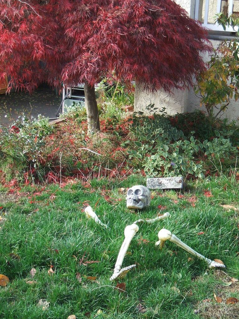 Skeleton in the grass