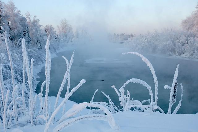 Alaska River - 01