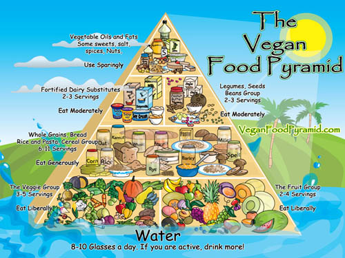 Vegan Food Pyramid - While I don't really think it's any harder for vegans to get balanced nutrition than omnivores, I do think it's important for everyone to think a little bit about what our bodies need, so I'm always intrigued when I stumble across things like these vegan food pyramids!