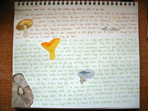 Illustrated journal entry, 6/20/11