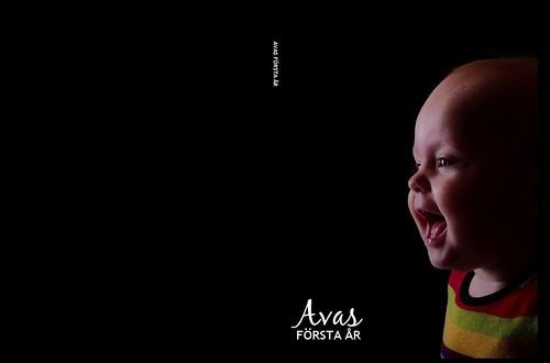 Boken om Avas första år