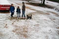 Snow in Mobile Alabama
