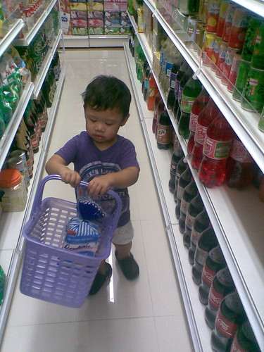 My little grocery shopper