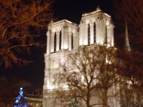 Notre Dame after dark