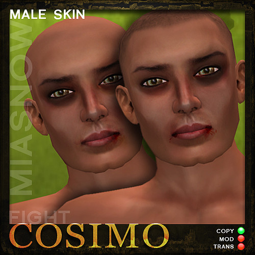 FIGHT Avatar Skin