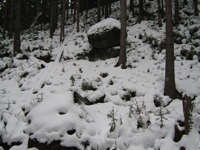 Kletterzugang in Richtung Auerhahnsteig (gesperrt/verhauen)
