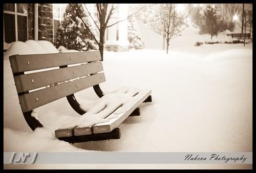 Snow2009_byNakevaCorothers-2494-2