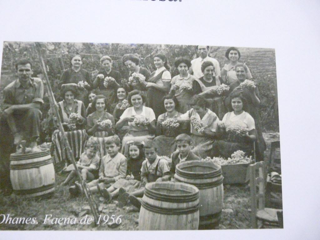 FAENA DE LA UVA: AÑO 1956