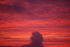 10 01 28_sunset_0014