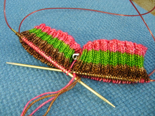 stripey_socks