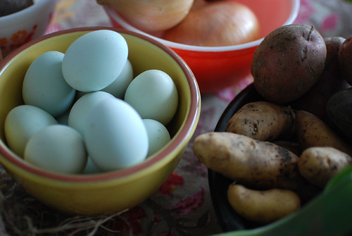 Araucana eggs