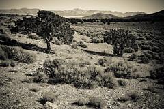 Southern Utah Landscapes