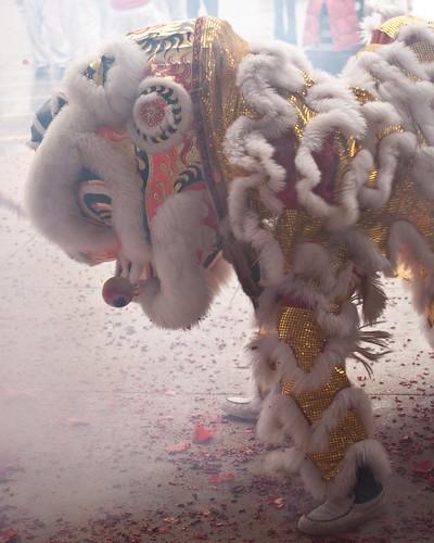 Lion Dance 002