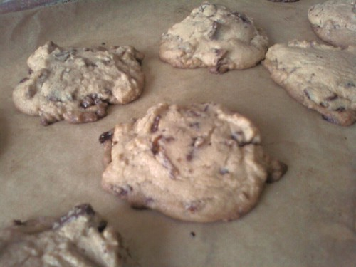 Behold. Chocolate chunk candied bacon cookies!