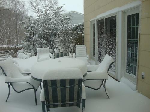 A Familiar Snowy Backyard Look - 2/6/10