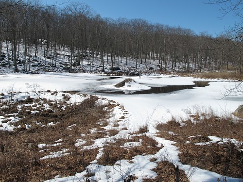 Lower dam, pond and den